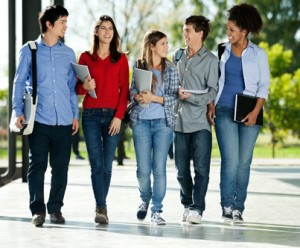 increase in student enrollment in canada germany and new zealand